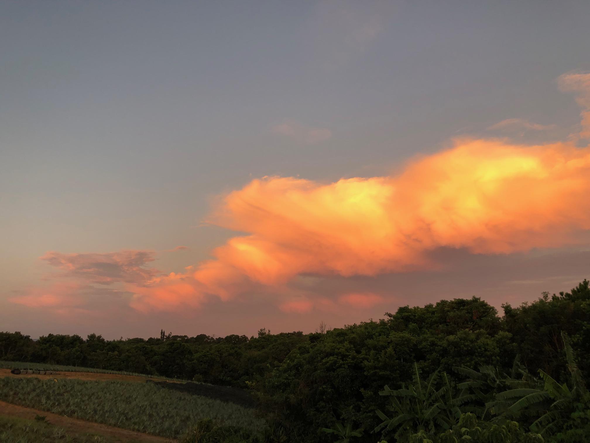 龍の夕焼け雲